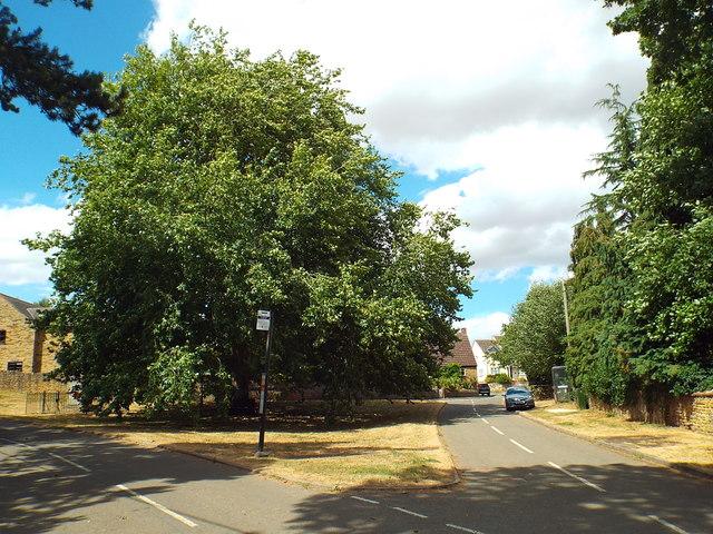 9dc8907dca0ca Walgrave village green © Malc McDonald cc-by-sa/2.0 :: Geograph ...