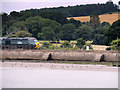 SX9783 : GWR Express on the South Devon Mainline between Starcross and Exeter by David Dixon