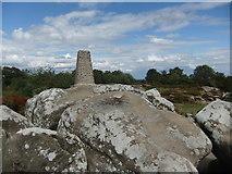 SE2065 : Brimham Trig pillar by David Brown