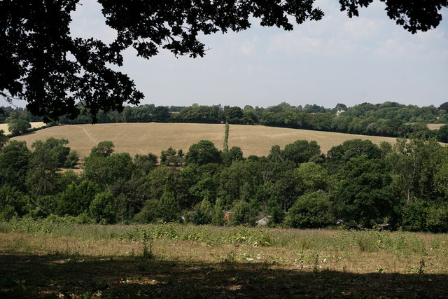 View From Pretty Lane