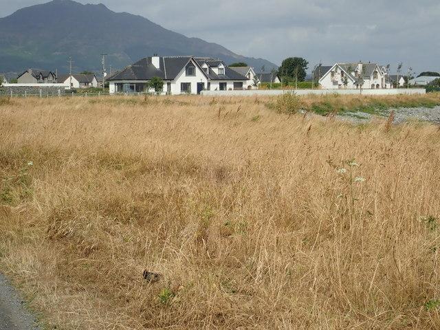 Large houses facing the sea on the coast road at  Ballagan