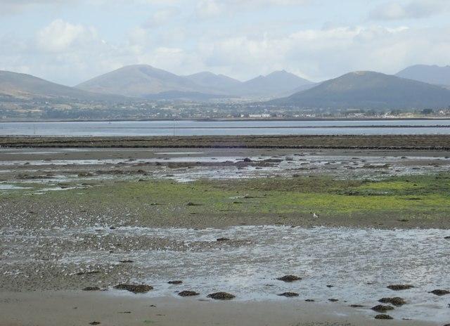 Exposed mudflats at Ballynamoney Murphy