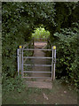 ST6062 : A short bridge by Neil Owen