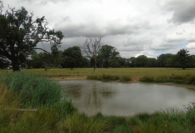 Pond at Wroxall Abbey Park