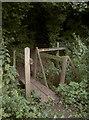 ST6061 : Back across the little drain by Neil Owen