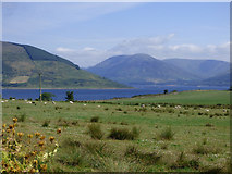 NS0769 : The Kyles of Bute by Thomas Nugent