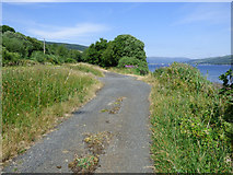 NS0570 : Section of old road by Thomas Nugent