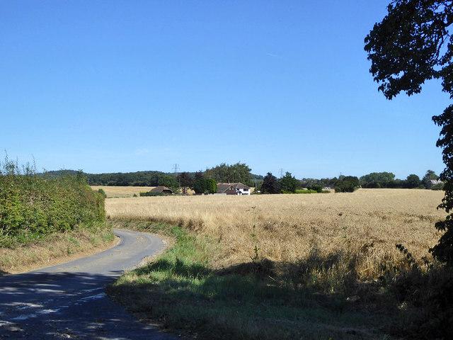 View towards house on Shottenden Lane