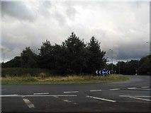 SO8718 : Roundabout on Corinium Avenue, Hucclecote by David Howard