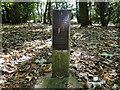 TG2317 : Wartime Liberator crash memorial by Adrian S Pye