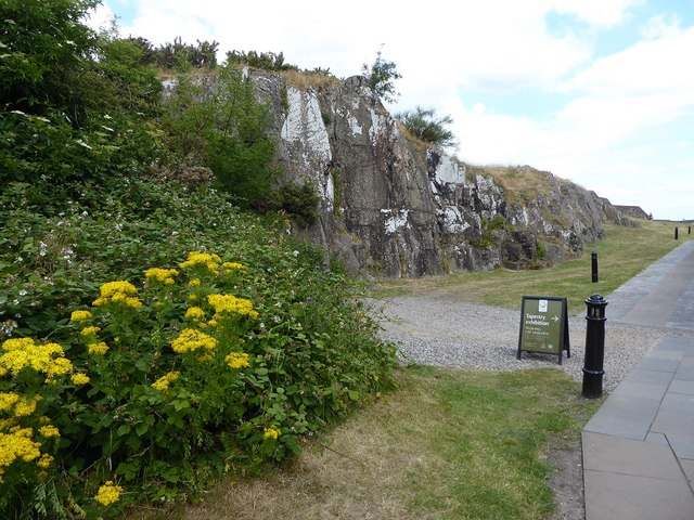 Exposed natural rock in Nether Bailey, Stirling Castle