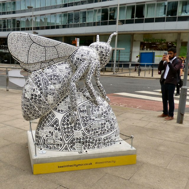 a3b55ca05b3c8 Manchester Doodle Bee © Gerald England cc-by-sa 2.0    Geograph ...