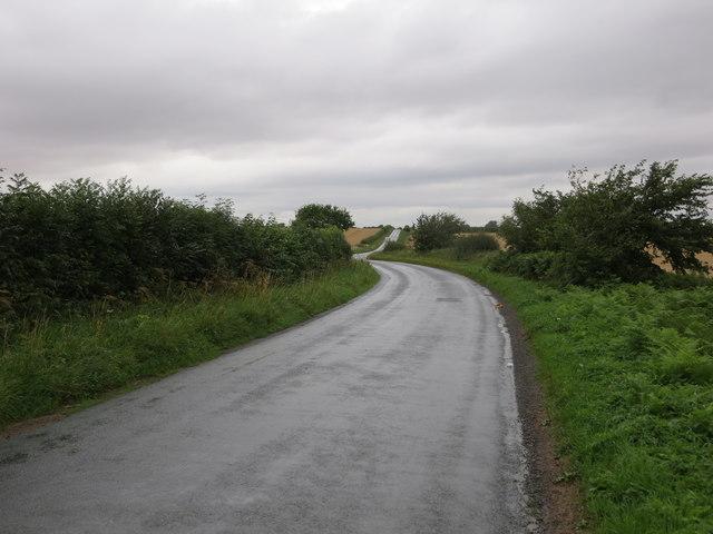 Road to Rainton near South Flat