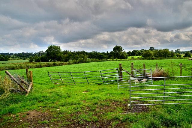 Open gates, Bancran