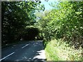 TQ5736 : Entering woodland along Bunny Lane by Christine Johnstone