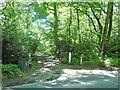 TQ5736 : Entrance to Bohemia, Whitehill Wood by Christine Johnstone