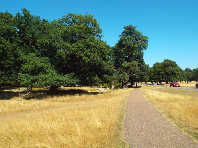 Path in Richmond Park