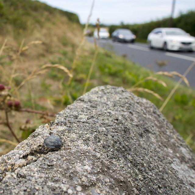 Bench Mark near Clough