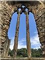 NZ2947 : Window Detail, Finchale Priory : Week 31