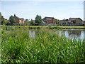 SE7970 : Lakeside Gardens, Norton by Christine Johnstone