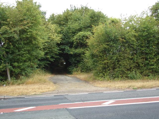Bridleway to Tey Road