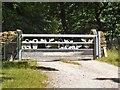 SK2383 : Decorative gate by Michael Dibb