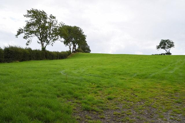 A low hill, Cloghog Upper