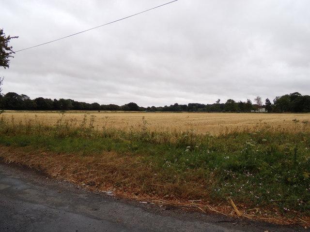 Farmland off America Road