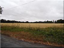 TL8526 : Farmland off America Road by Adrian Cable