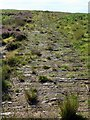NY7362 : Track on Plenmeller Common by Andrew Curtis