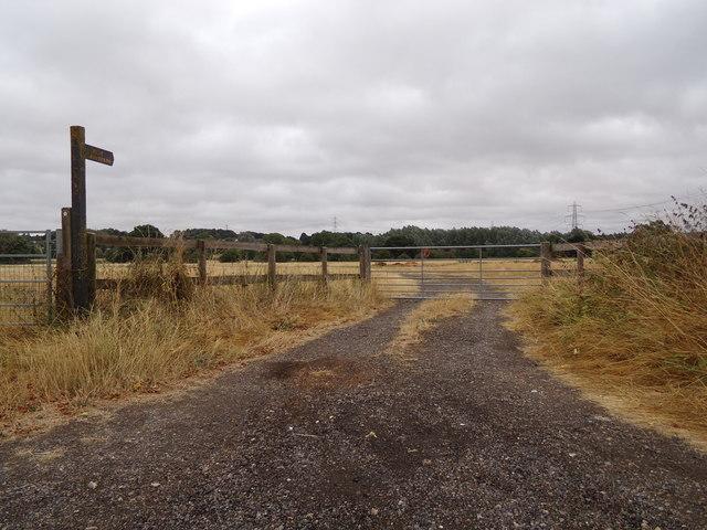 Footpath off Tey Road