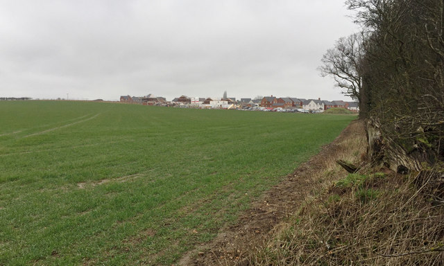 New houses under construction, Bishop's Tachbrook