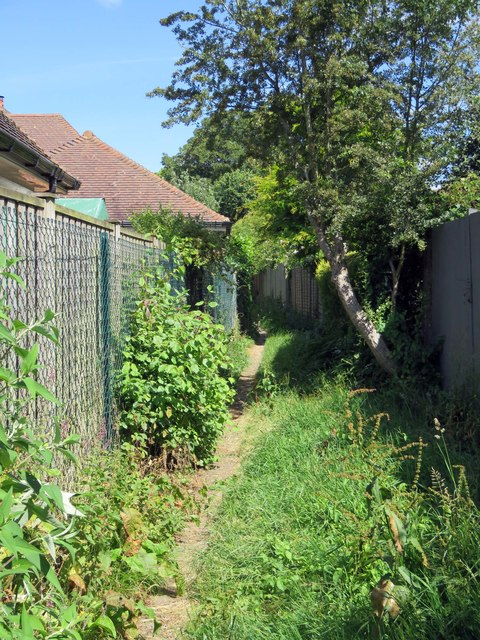 A footpath between gardens on Moreton Road