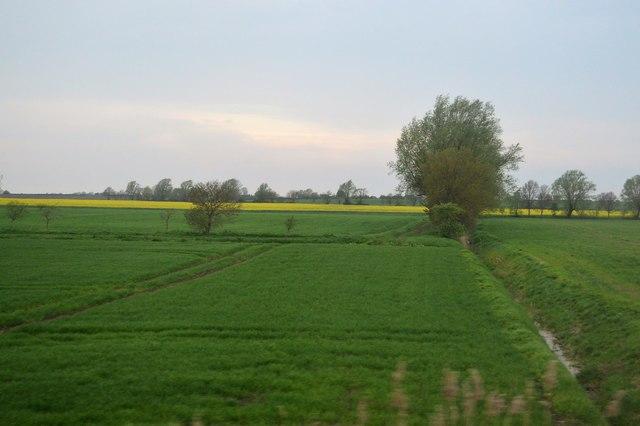Ditch, Hall Fen