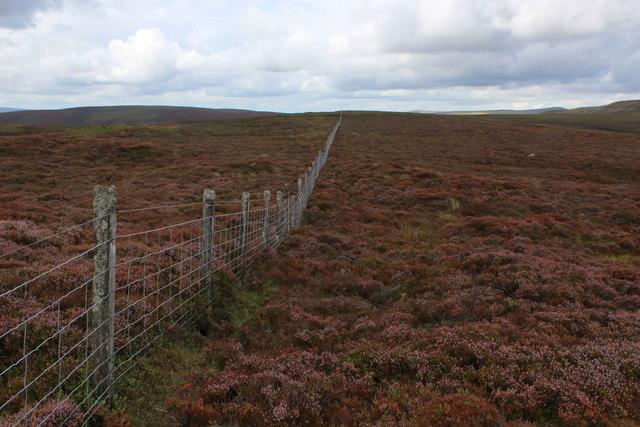 Boundary Fence on Saddle Hill