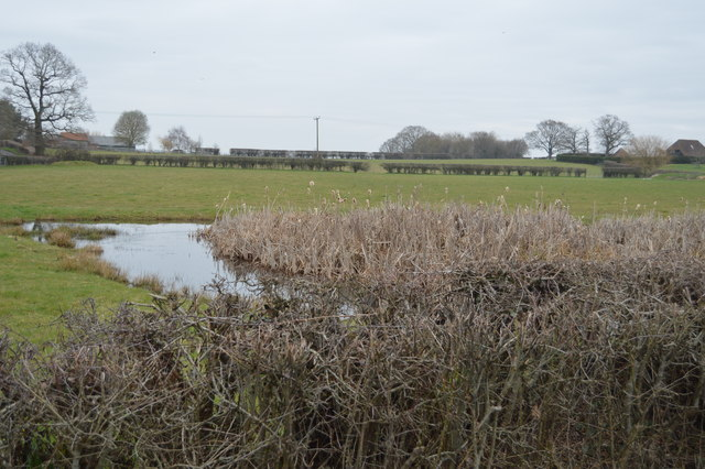 Pond, Ponds Farm