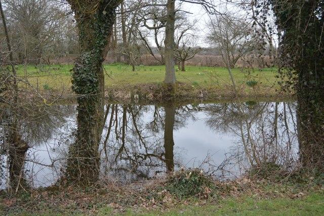 Pond at Ponds Farm