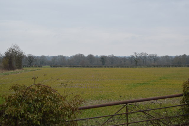 Farmland, Corner Farm