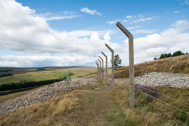 Fence along plantation on Drypry Hill