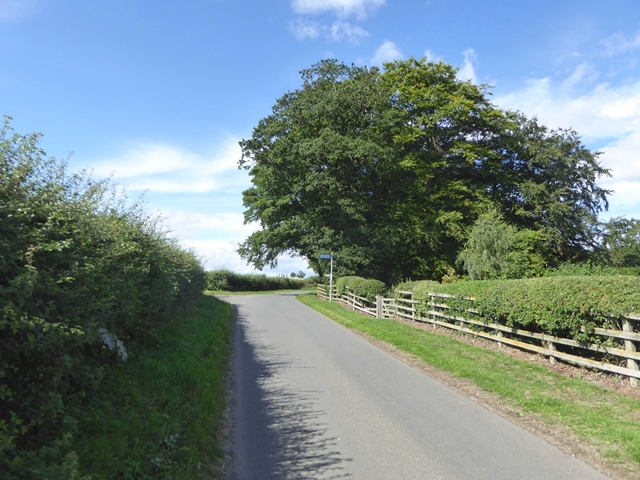 Country road by Sturton Grange