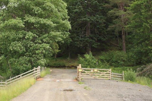 Estate track north of Gallovie