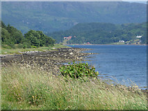 NS0372 : The Kyles of Bute by Thomas Nugent