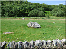 NS0372 : Boulders in a field by Thomas Nugent