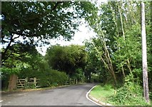 TQ3217 : Fragbarrow Lane, Burgess Hill by David Howard