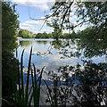 SP1588 : Lake, Norman Chamberlain Recreation Ground, Shard End, east Birmingham by Robin Stott