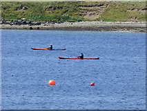NS0274 : Kayaks in the Kyles of Bute by Thomas Nugent