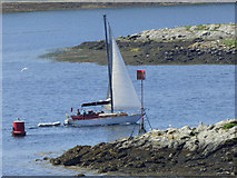 NS0175 : Yacht in the Kyles of Bute by Thomas Nugent