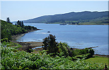 NS0274 : The Kyles of Bute by Thomas Nugent
