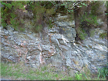 NS0176 : Rockface by the B866 road by Thomas Nugent