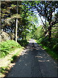NS0177 : The B866 road near Kinlochruel by Thomas Nugent